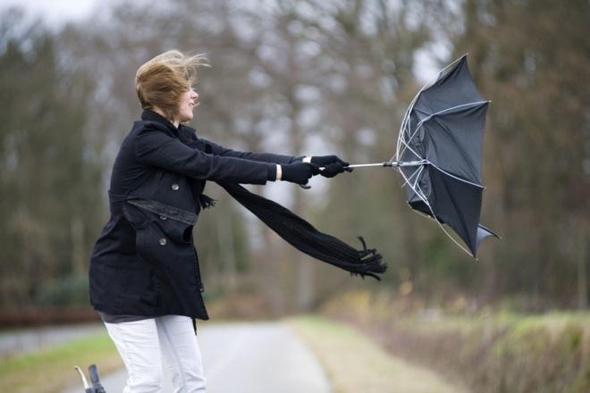 МЧС предупреждает о грозе и шквалистом ветре завтра