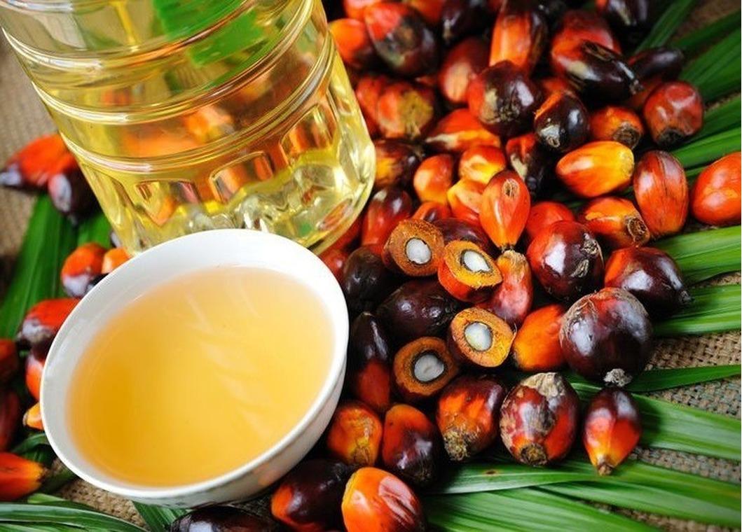 Саратовская область оказалась второй по ввозу пальмового масла