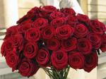 В Аткарске состоится фестиваль роз