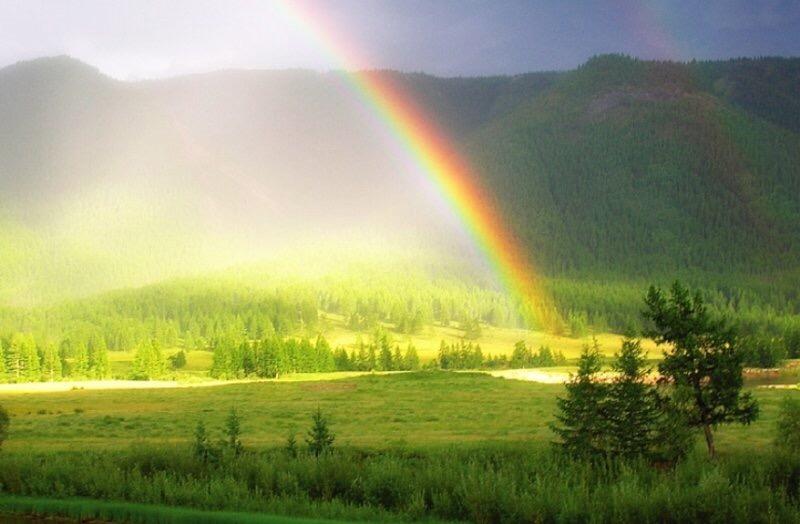 Завтра в Саратовской области ожидается усиление ветра, гроза и жара