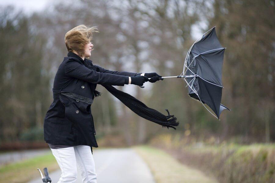 Завтра в области ожидается дождь с грозой и ураганным ветром