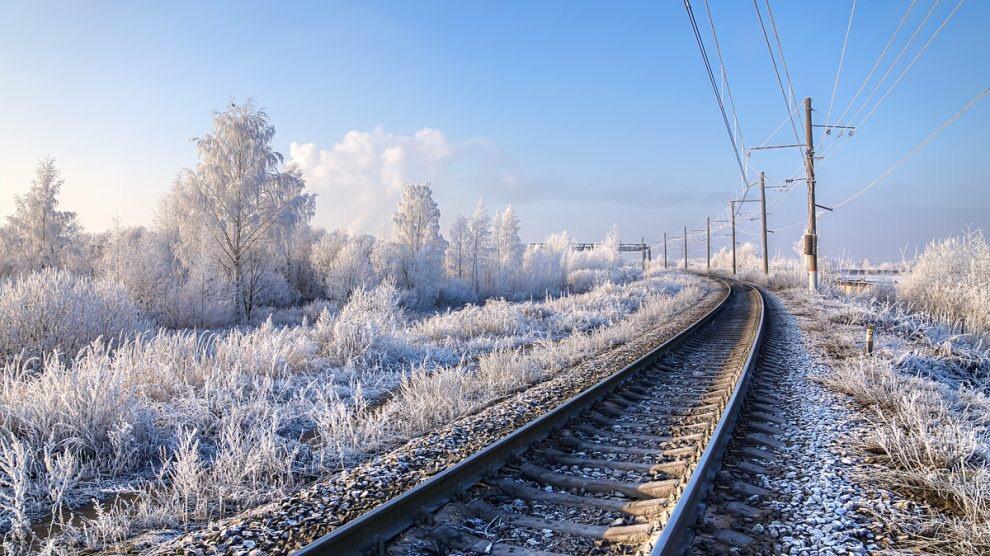 Радаев заявил об организации в области нового транспортного кольца
