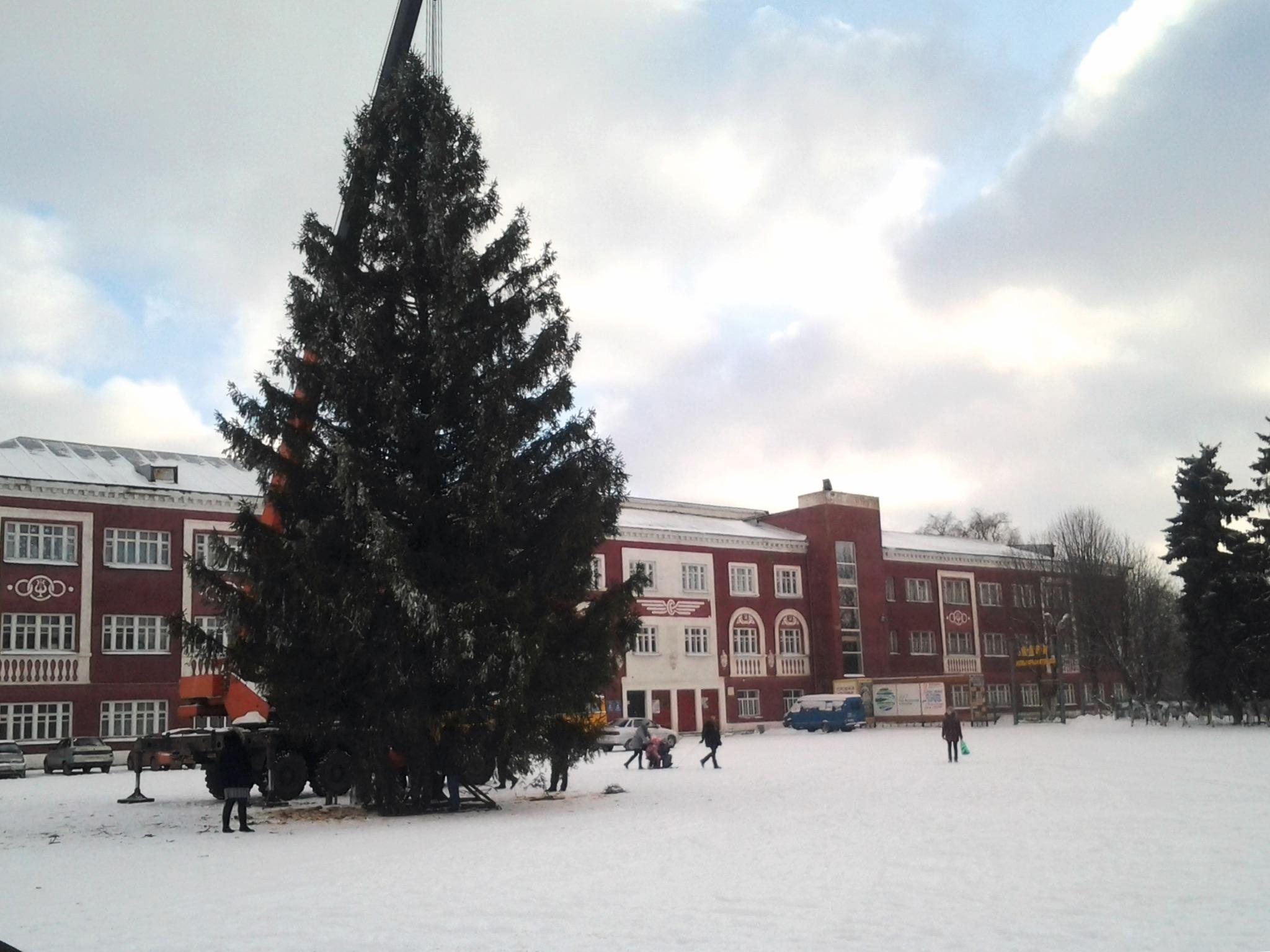 На площади установили главную елку города