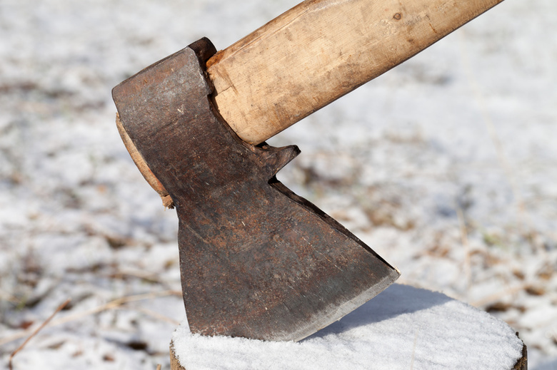 Ртищевцы незаконно срубили шесть тополей на дрова