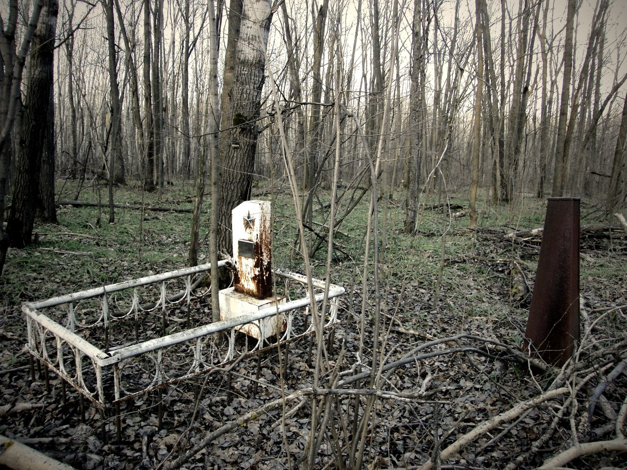 В Ртищевском районе прокуратура обнаружила 37 неучтенных кладбищ