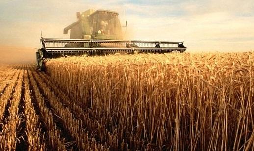 Губернатор отметил труд ртищевских аграриев