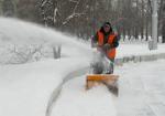 В Ртищевском районе очищено от снега 264 двора