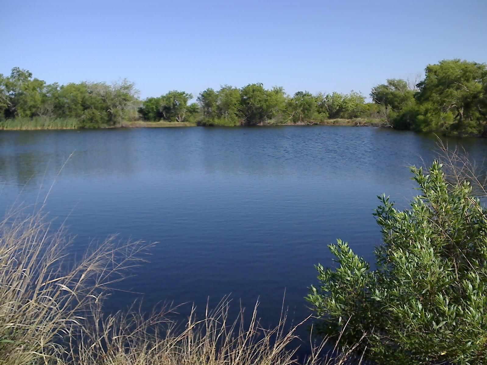 Рыбак умер возле пруда Блинчик