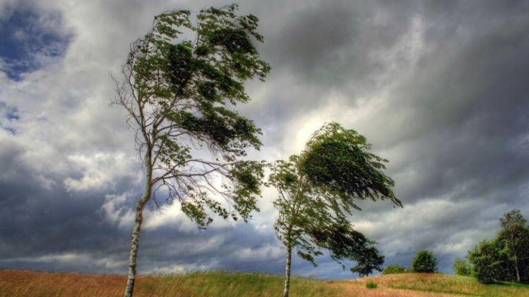 Синоптики предупреждают о шквалистом ветре с градом