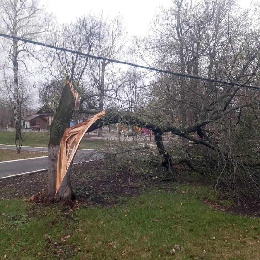 В Ртищевском районе ликвидируются последствия ураганного ветра