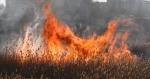 В Ртищевском районе произошел ландшафтный пожар на 5 гектарах