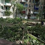 В области подвели итоги работы по устранению последствий урагана